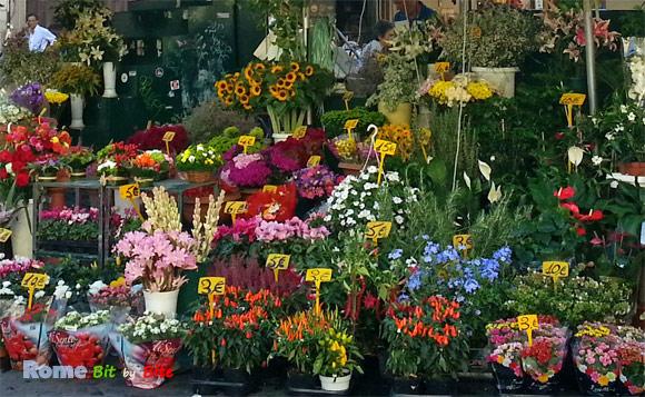 campo-de-fiori-4c