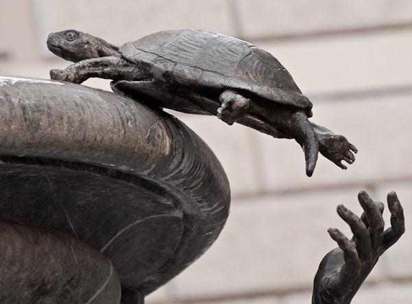 fontana-delle-tartarughe-2