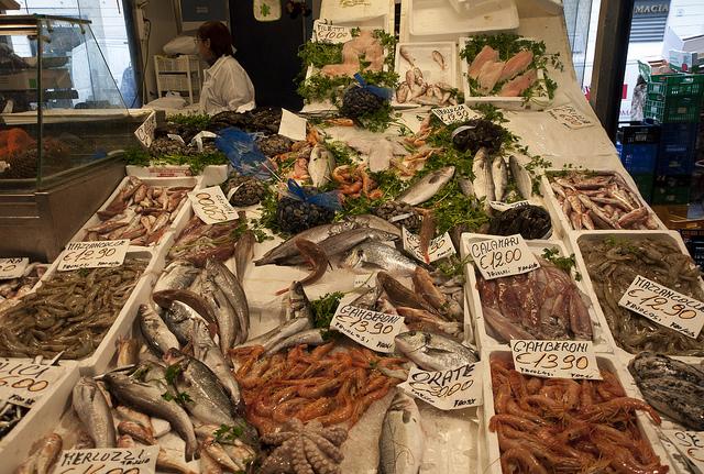 testaccio-market-fish