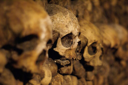 Human skulls in catacombs