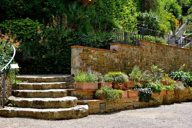 florence-rose-garden