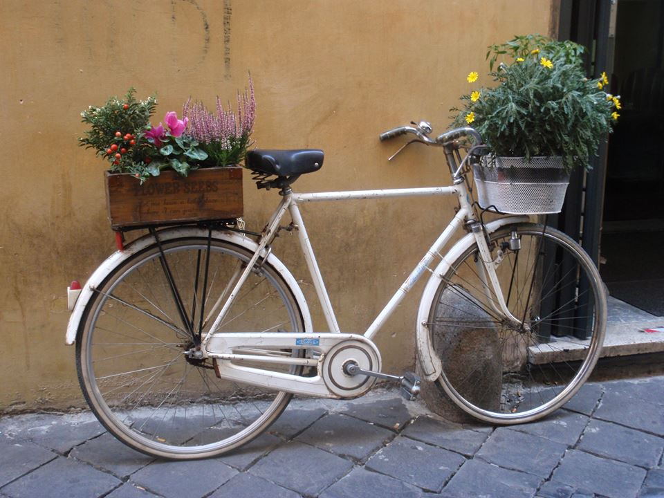 Flower bike in Rome. Photo by Audet Natalie.