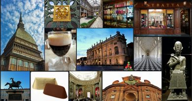 Torino collage