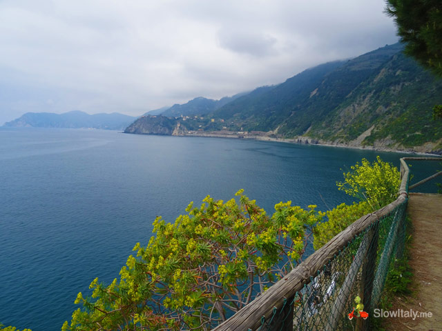 Manarola picnic area from where to shoot photos. Photo Slow Italy.