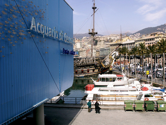 Acquario di Genova. Photo by Paul.