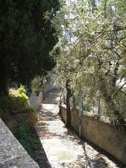 A steep creuza in the Sant-Ilario quarter of Genoa.