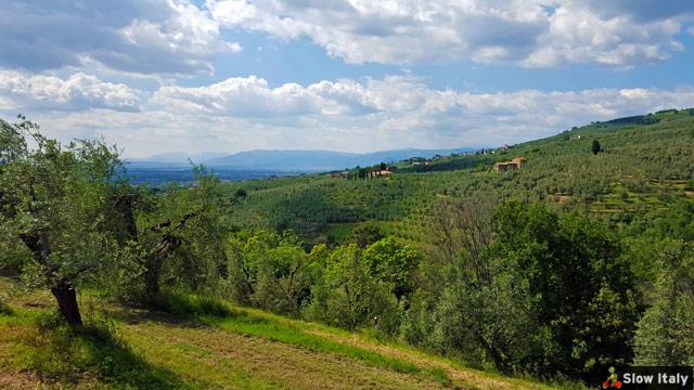vinci-landscape-b